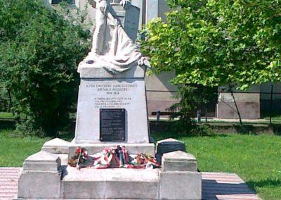 Solt I.vh emlékmű 2010.07.13. küldő-Csiszár Lehel