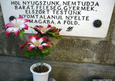 Sormás II.vh emlékmű 2010.07.14. küldő-Sümec (5)