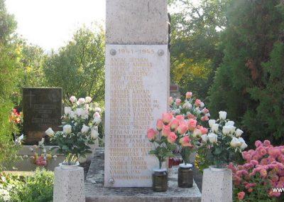 Szücsi világháborús emlékmű 2008.10.13.küldő-kalyhas (4)