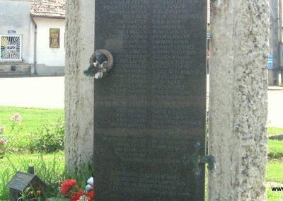 Szakoly világháborús emlékmű 2009.07.02. küldő-kalyhas (6)