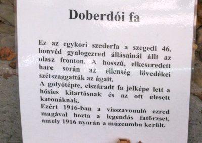 Szeged Az I. világháború kegyeleti és hadi kiállítása Belvárosi temető 2014. 10.27. - 11.02. küldő-Emese (2)