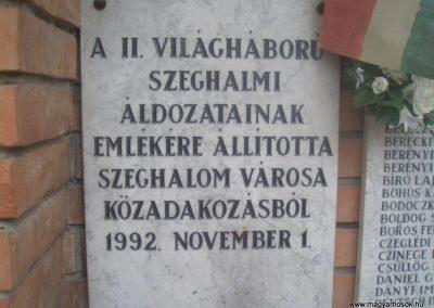 Szeghalom II.vh emlékmű 2008.04.10.küldő-egy Magyar anya (2)