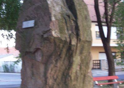 Szentlőrinckáta világháborús emlékmű 2009.09.30. küldő-miki (8)