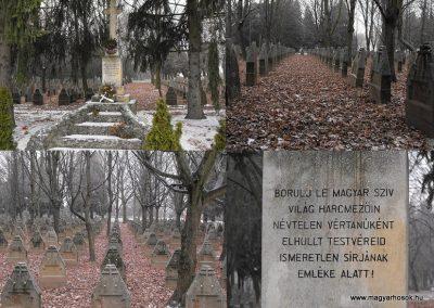 Szombathely Katonatemető 2009.01.15.küldő-gyurkusz (2)
