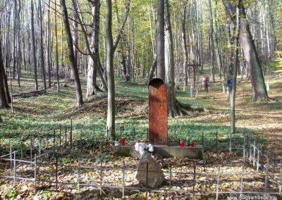 Tatabánya, Körtvélyespuszta, erdei temető