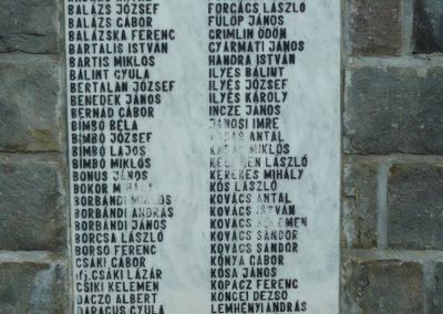 Torja hősi emlékmű 2009.08.21.küldő-Ágca (7)