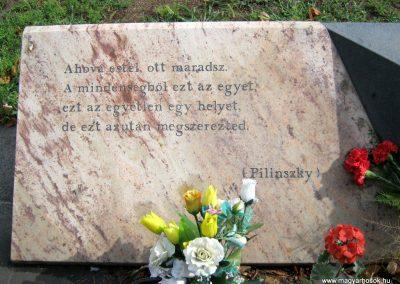VIII. kerület Kerepesi temető II. világháborús emlékmű 2014.07.17. küldő-Emese (3)
