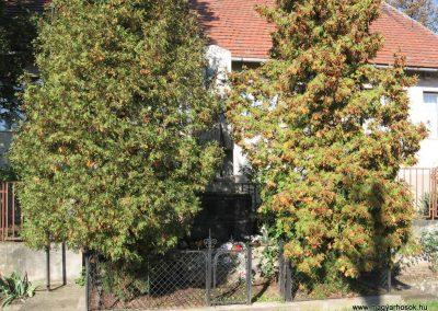 Vatta világháborús emlékmű 2007.09.20.küldő-Kályhás
