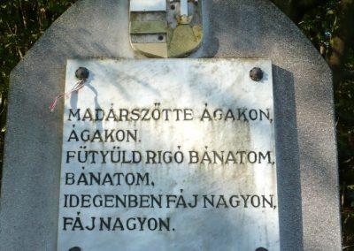 Velemér hősi emlékmű 2012.09.28. küldő-Sümec (11)