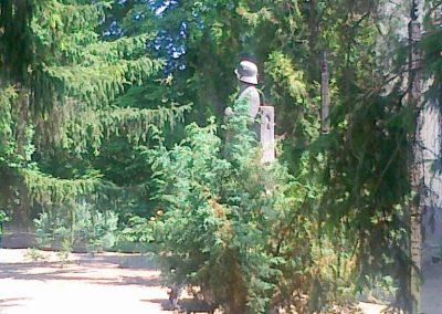 Zsáka világháborús emlékmű 2011.06.16. küldő-Csiszár Lehel (4)